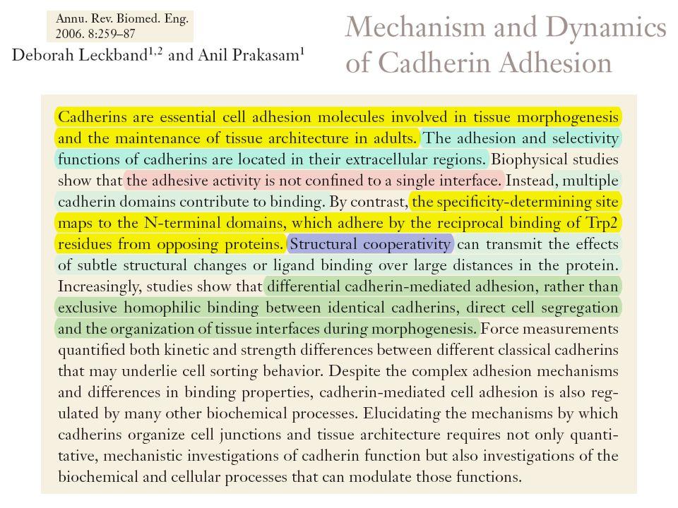 Developmental roles of cadherins.Halbleib J M, and Nelson W J Genes Dev.