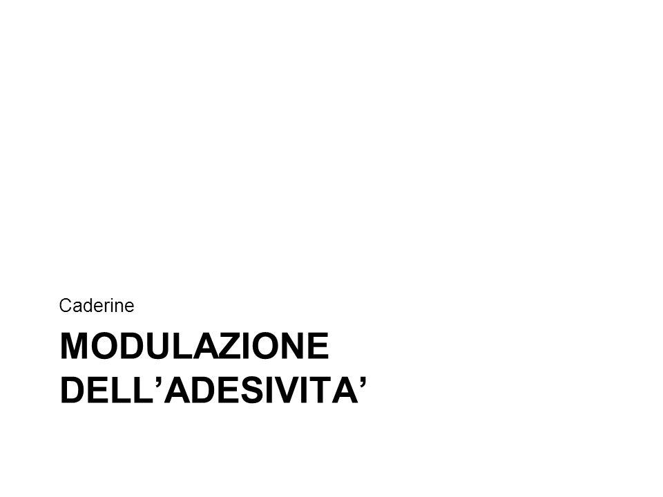 MODULAZIONE DELL'ADESIVITA' Caderine