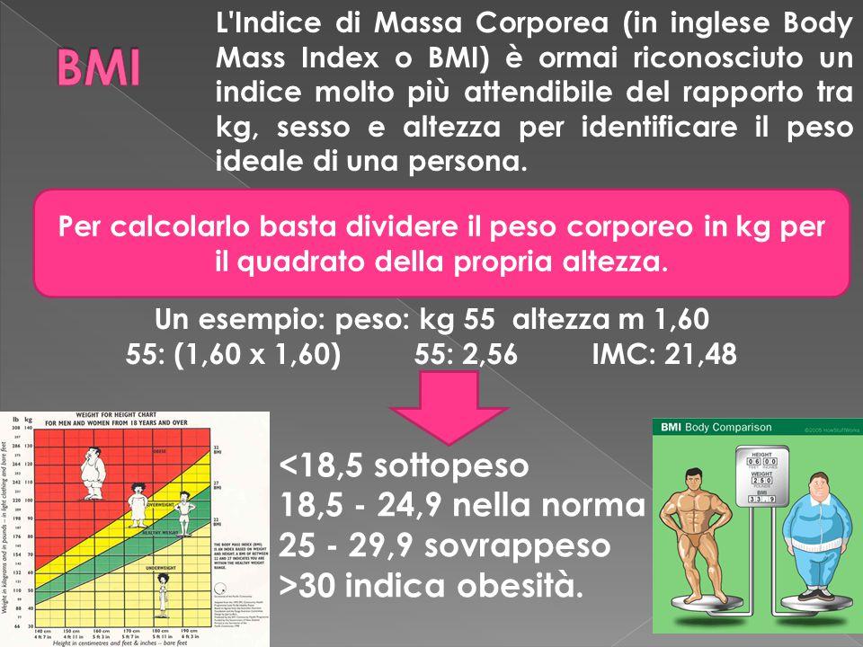 L Indice di Massa Corporea (in inglese Body Mass Index o BMI) è ormai riconosciuto un indice molto più attendibile del rapporto tra kg, sesso e altezza per identificare il peso ideale di una persona.