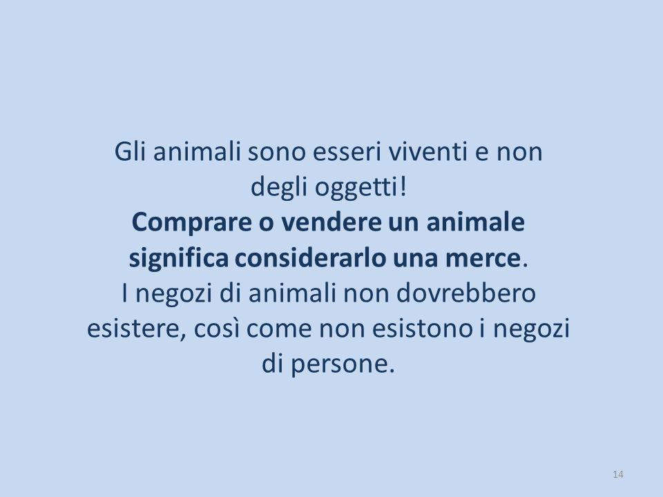 14 Gli animali sono esseri viventi e non degli oggetti! Comprare o vendere un animale significa considerarlo una merce. I negozi di animali non dovreb