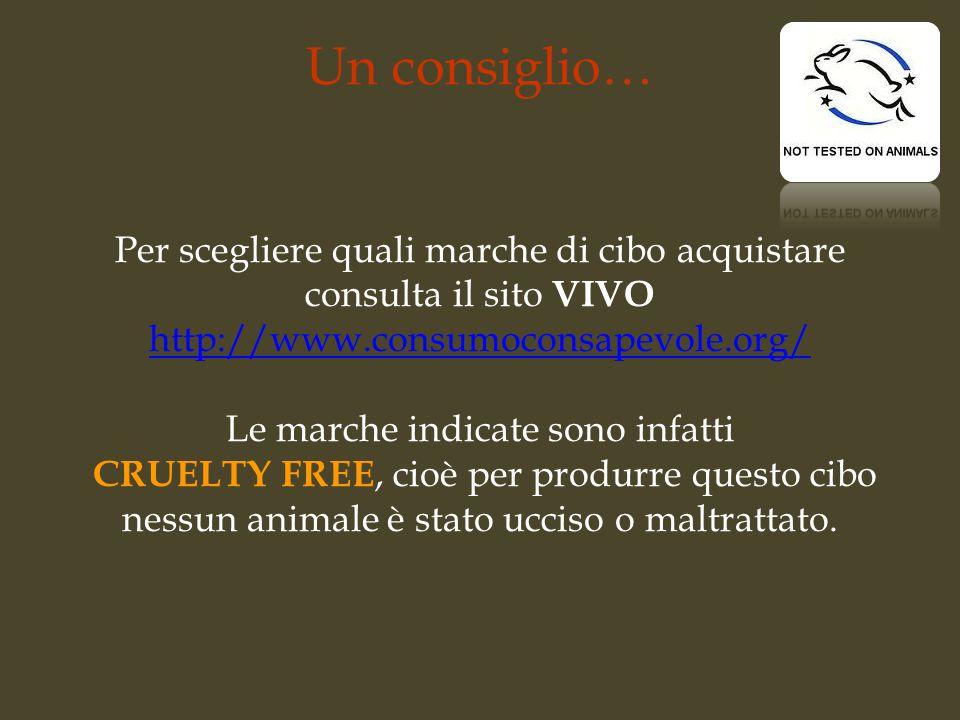 Un consiglio… Per scegliere quali marche di cibo acquistare consulta il sito VIVO http://www.consumoconsapevole.org/ Le marche indicate sono infatti C