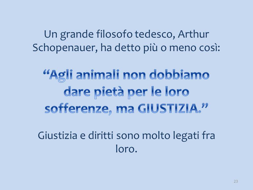 IL CIRCO CON ANIMALI 24