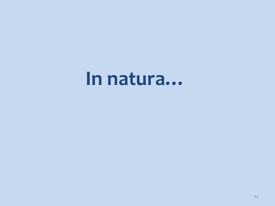 62 In natura…