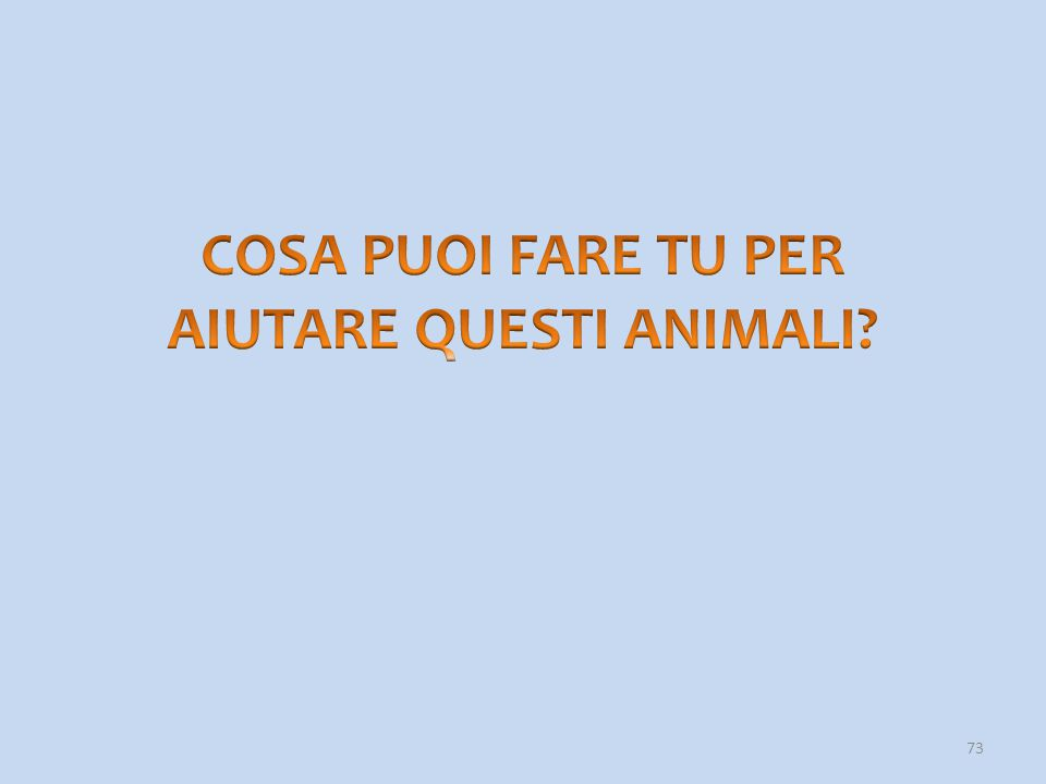 74 Se si vogliono conoscere veramente gli animali, è meglio vedere dei documentari, leggere dei libri o navigare su Internet.