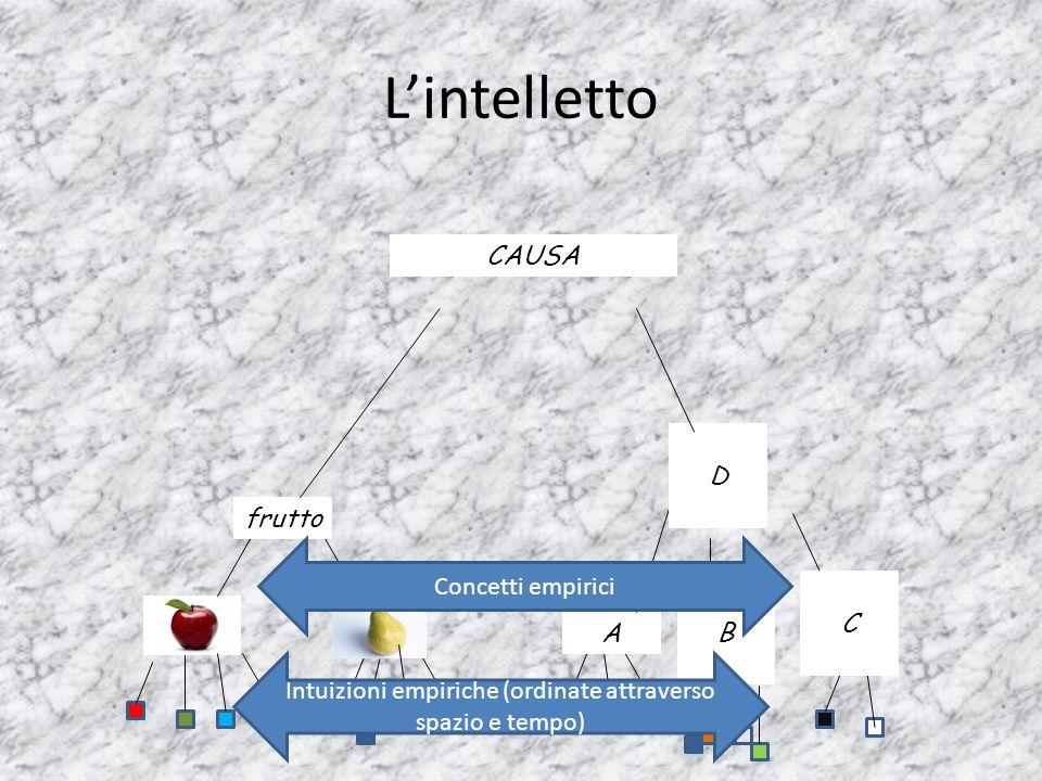L'intelletto frutto A B C D Intuizioni empiriche (ordinate attraverso spazio e tempo) Concetti empirici CAUSA