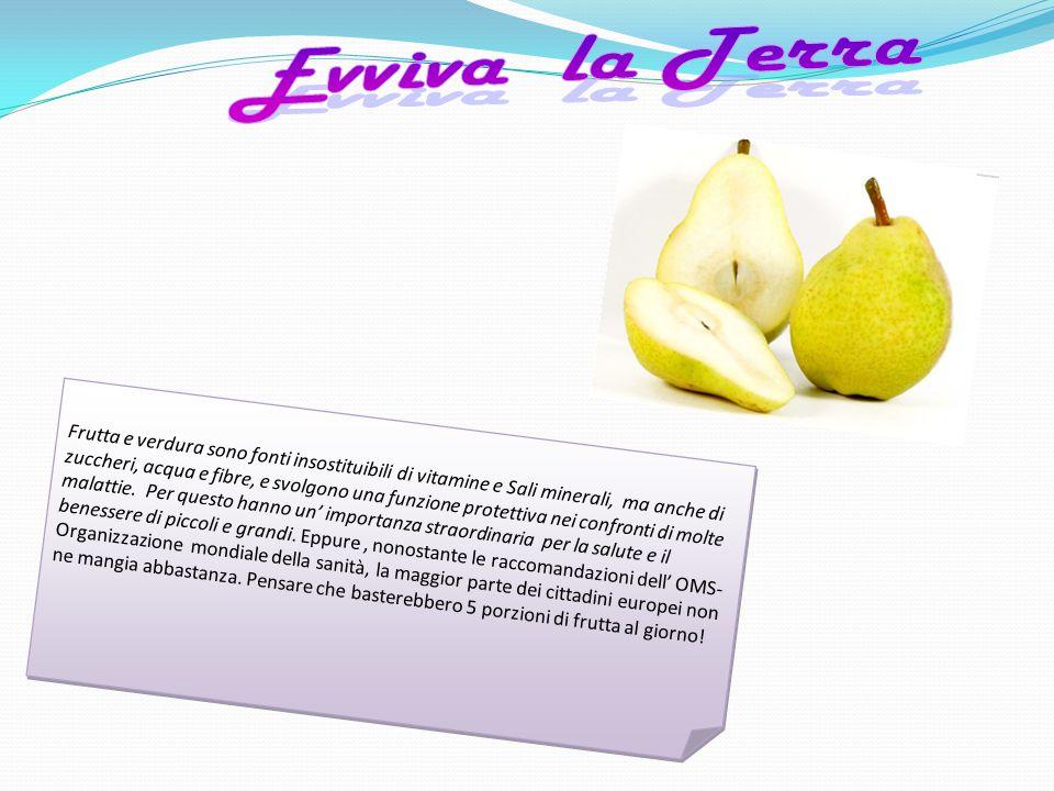 Frutta e verdura sono fonti insostituibili di vitamine e Sali minerali, ma anche di zuccheri, acqua e fibre, e svolgono una funzione protettiva nei co