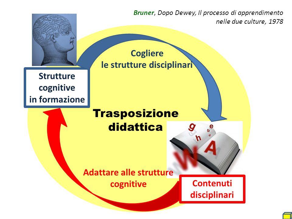 Strutture cognitive in formazione Adattare alle strutture cognitive Contenuti disciplinari Cogliere le strutture disciplinari Bruner, Dopo Dewey, Il p