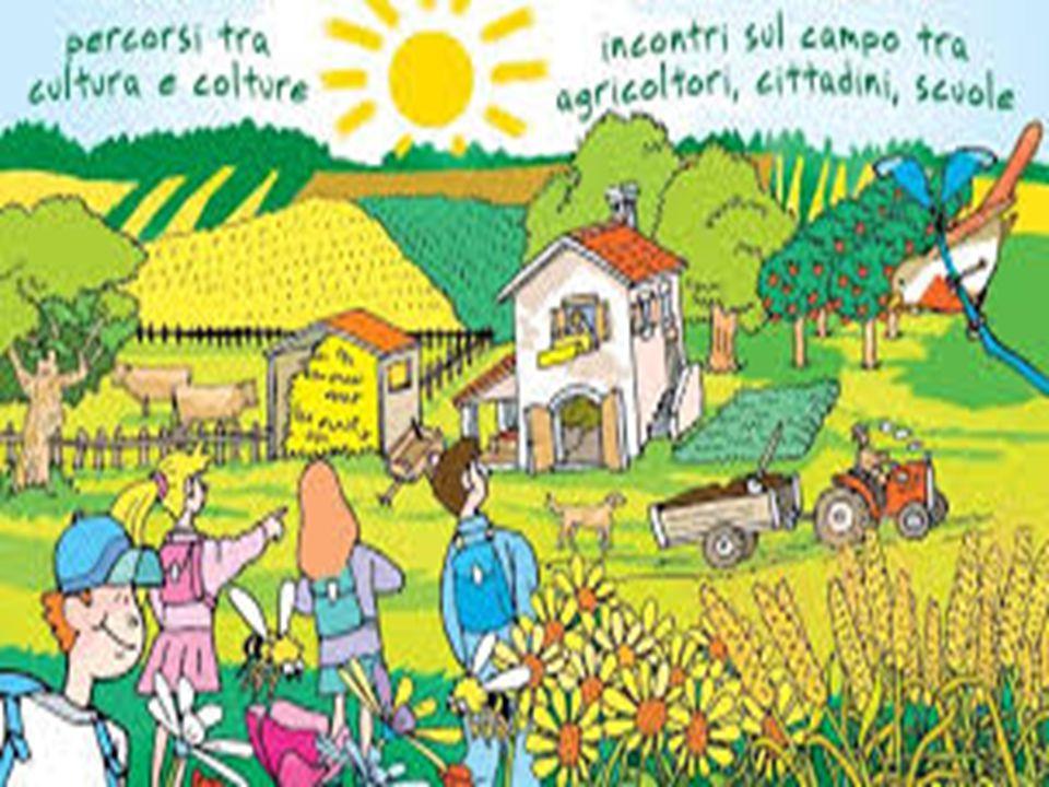 FATTORIA IL TESORO NASCOSTO Questa fattoria offre l'opportunità ai bambini di varie età di conoscere l'ambiente naturale e fare nuove esperienze al di fuori degli orari scolastici.
