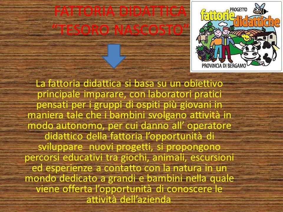 """FATTORIA DIDATTICA """"TESORO NASCOSTO"""" La fattoria didattica si basa su un obiettivo principale imparare, con laboratori pratici pensati per i gruppi di"""