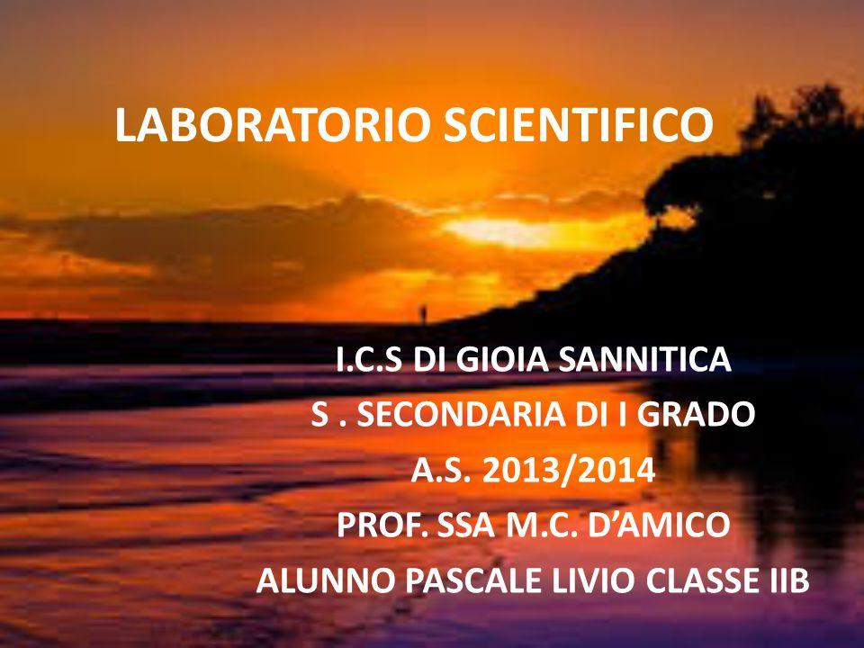I.C.S DI GIOIA SANNITICA S. SECONDARIA DI I GRADO A.S. 2013/2014 PROF. SSA M.C. D'AMICO ALUNNO PASCALE LIVIO CLASSE IIB LABORATORIO SCIENTIFICO