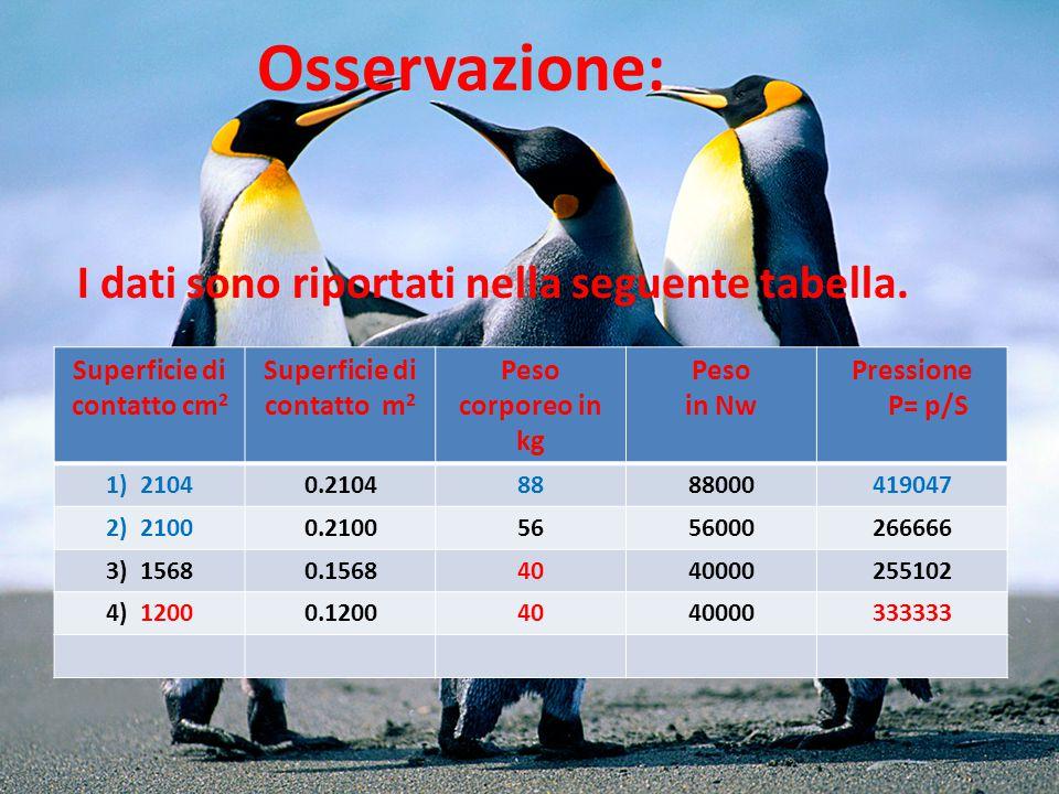 CONCLUSIONE: A parità di peso corporeo (in tabella n.