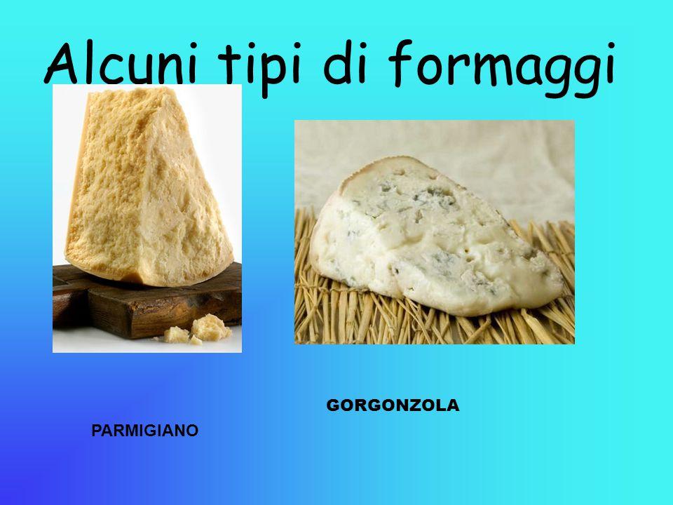 Alcuni tipi di formaggi PARMIGIANO GORGONZOLA