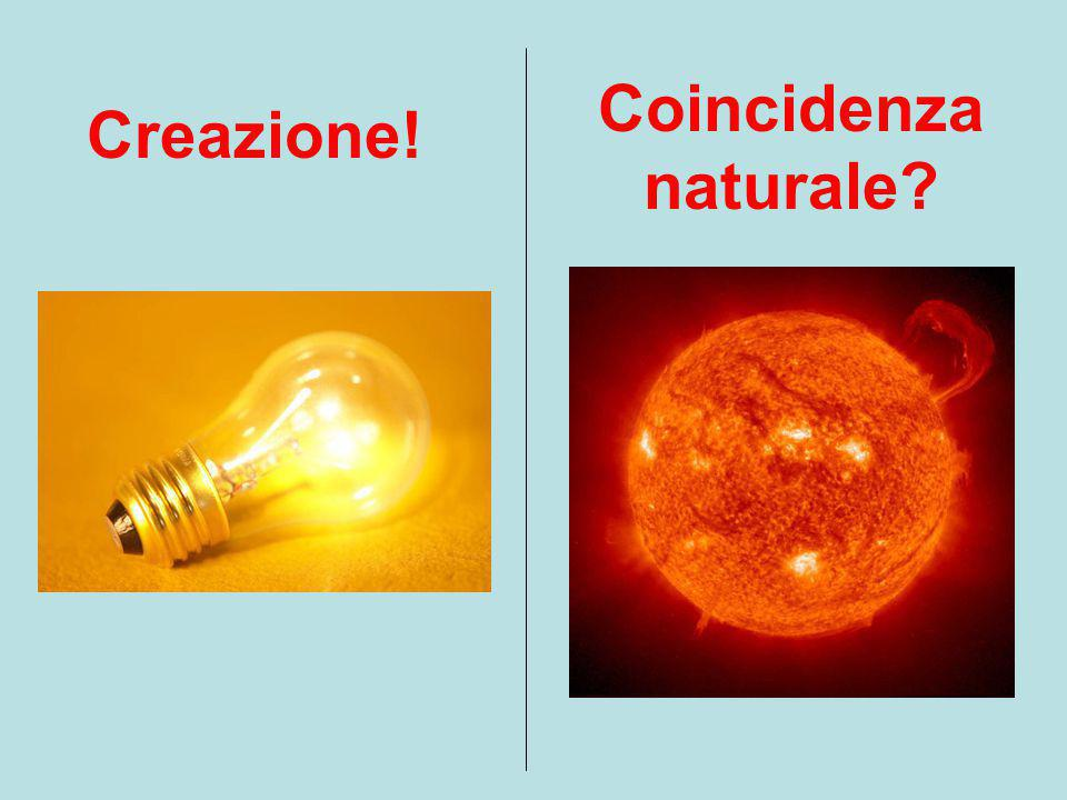 Creazione! Coincidenza naturale