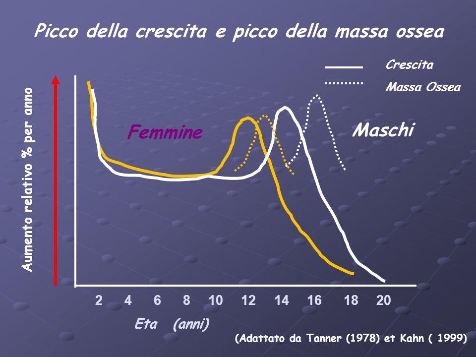 2 4 6 8 10 12 14 16 18 20 Eta (anni) (Adattato da Tanner (1978) et Kahn ( 1999) Aumento relativo % per anno Femmine Maschi Crescita Massa Ossea Picco