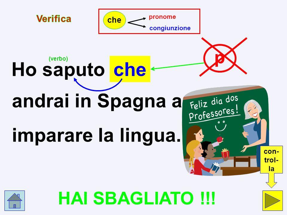 p c Ho saputo che andrai in Spagna a imparare la lingua. pronome p congiunzione c che Clicca nel cerchio che indica la risposta esatta.