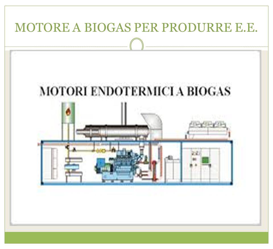 MOTORE A BIOGAS PER PRODURRE E.E.