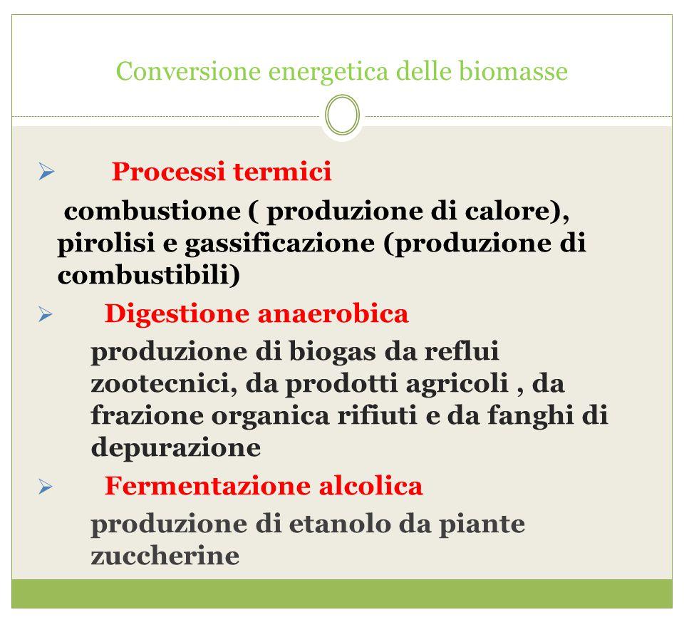 Conversione energetica delle biomasse  Processi termici combustione ( produzione di calore), pirolisi e gassificazione (produzione di combustibili) 