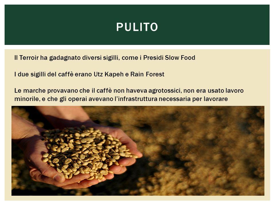 PULITO Il Terroir ha gadagnato diversi sigilli, come i Presidi Slow Food I due sigilli del caffè erano Utz Kapeh e Rain Forest Le marche provavano che il caffè non haveva agrotossici, non era usato lavoro minorile, e che gli operai avevano l'infrastruttura necessaria per lavorare