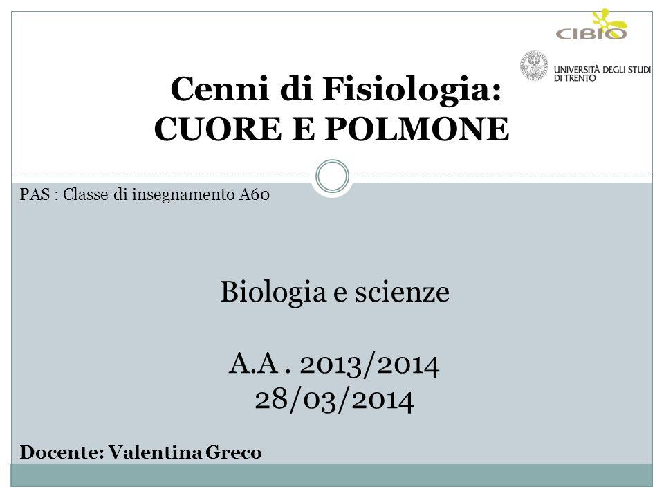 PAS : Classe di insegnamento A60 Biologia e scienze A.A. 2013/2014 28/03/2014 Docente: Valentina Greco Cenni di Fisiologia: CUORE E POLMONE