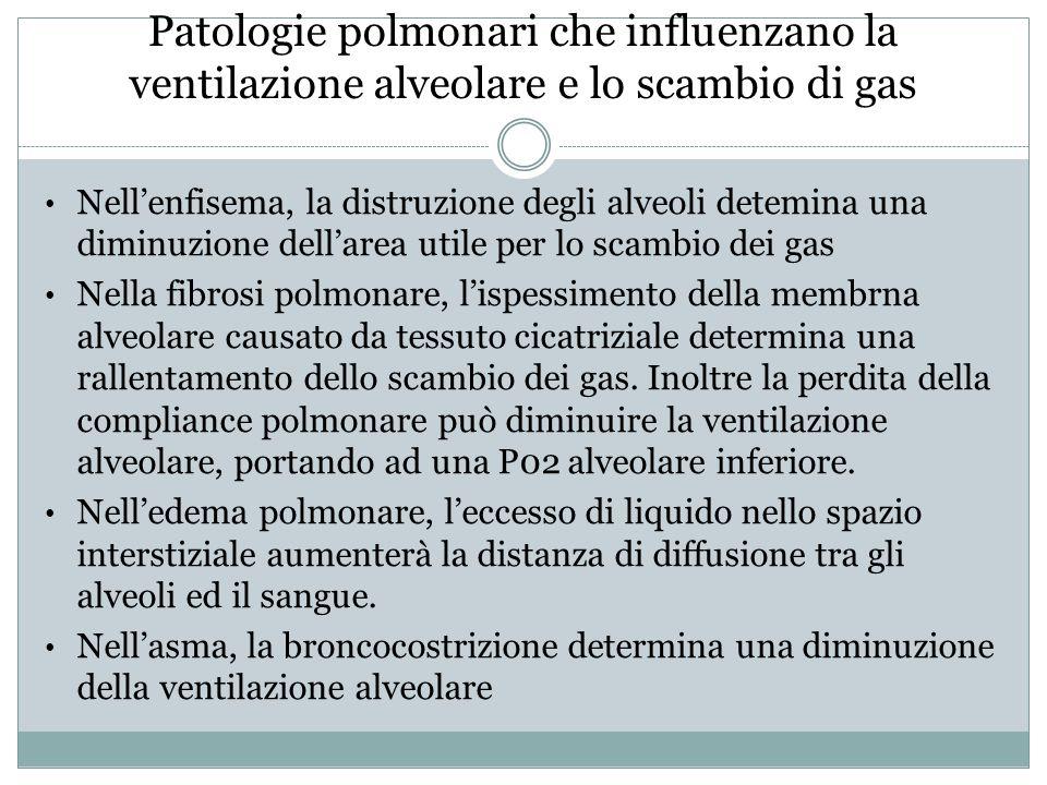 Patologie polmonari che influenzano la ventilazione alveolare e lo scambio di gas Nell'enfisema, la distruzione degli alveoli detemina una diminuzione