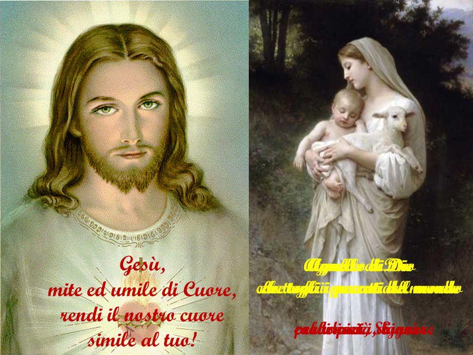salvezza di chi spera in te abbi pietà di noi speranza di chi muore gioia di tutti i santi abbi pietà di noi