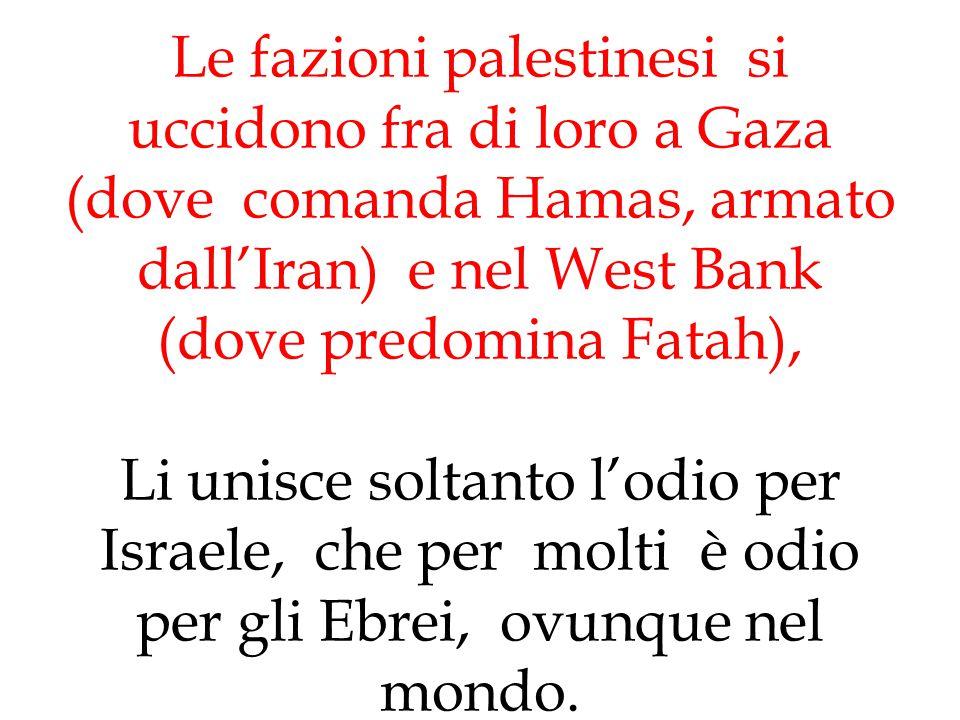 Le fazioni palestinesi si uccidono fra di loro a Gaza (dove comanda Hamas, armato dall'Iran) e nel West Bank (dove predomina Fatah), Li unisce soltant