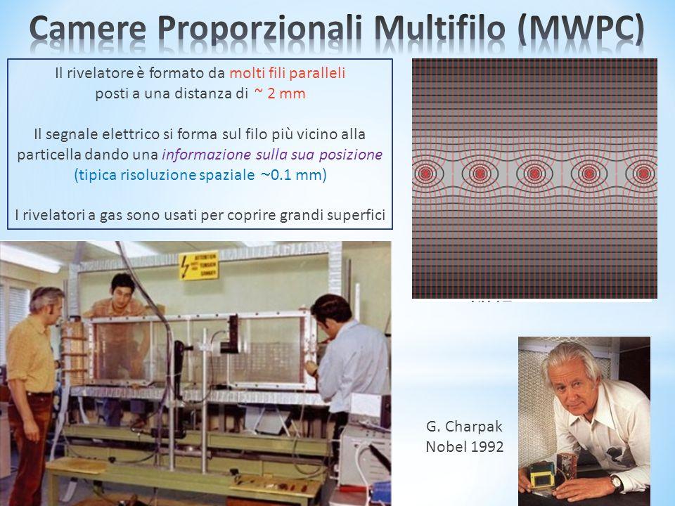 Il rivelatore è formato da molti fili paralleli posti a una distanza di ~ 2 mm Il segnale elettrico si forma sul filo più vicino alla particella dando una informazione sulla sua posizione (tipica risoluzione spaziale  0.1 mm) I rivelatori a gas sono usati per coprire grandi superfici G.