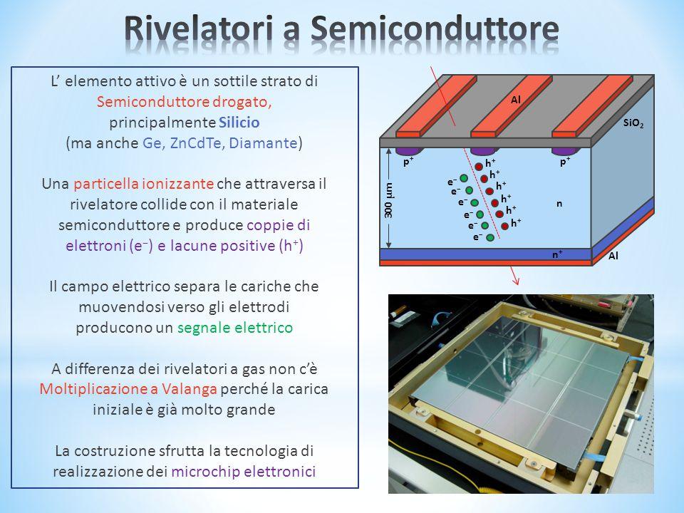 300 μm n Al h+h+ h+h+ h+h+ h+h+ h+h+ h+h+ e–e– e–e– e–e– e–e– e–e– e–e– p+p+ p+p+ n+n+ SiO 2 L' elemento attivo è un sottile strato di Semiconduttore drogato, principalmente Silicio (ma anche Ge, ZnCdTe, Diamante) Una particella ionizzante che attraversa il rivelatore collide con il materiale semiconduttore e produce coppie di elettroni (e – ) e lacune positive (h + ) Il campo elettrico separa le cariche che muovendosi verso gli elettrodi producono un segnale elettrico A differenza dei rivelatori a gas non c'è Moltiplicazione a Valanga perché la carica iniziale è già molto grande La costruzione sfrutta la tecnologia di realizzazione dei microchip elettronici