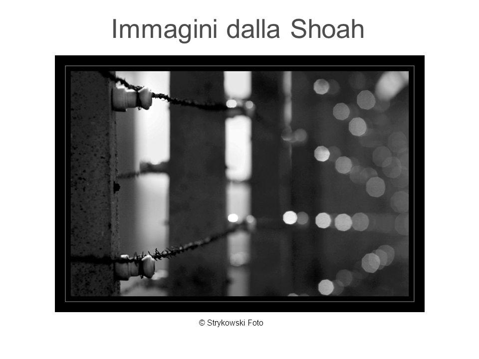 Immagini dalla Shoah © Strykowski Foto