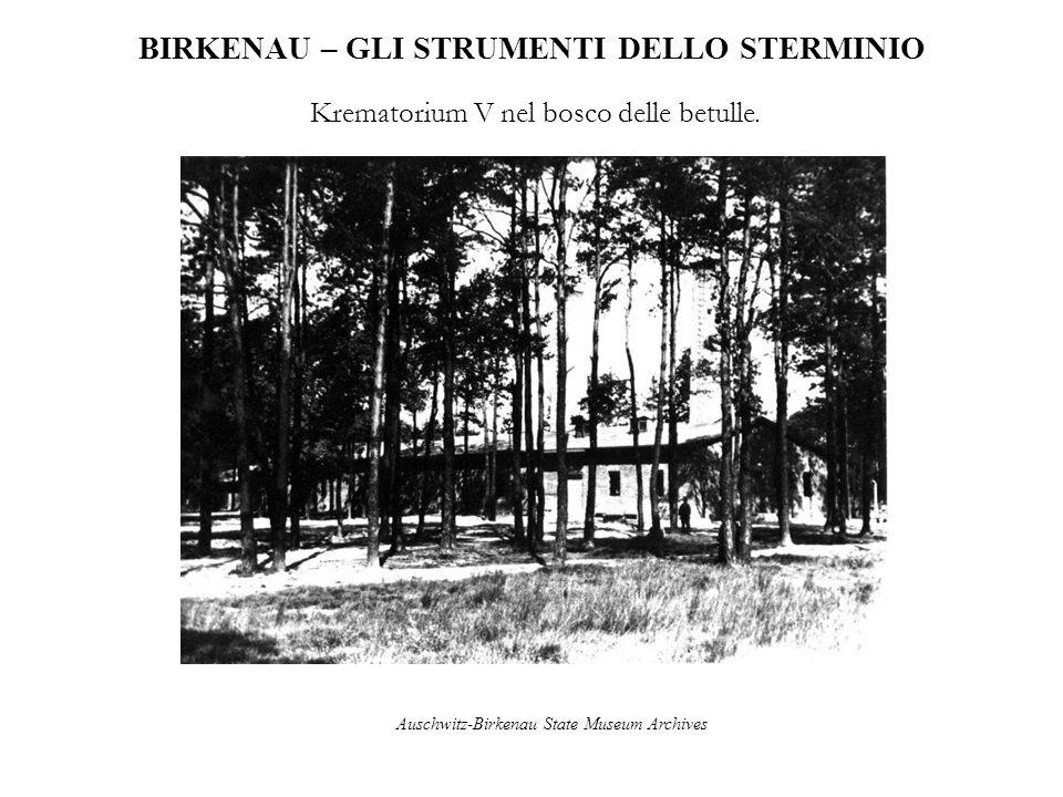 BIRKENAU – GLI STRUMENTI DELLO STERMINIO Krematorium V nel bosco delle betulle. Auschwitz-Birkenau State Museum Archives