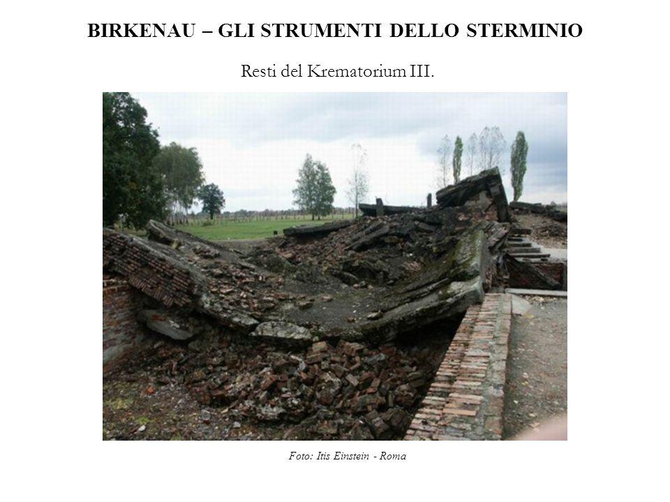 BIRKENAU – GLI STRUMENTI DELLO STERMINIO Resti del Krematorium III. Foto: Itis Einstein - Roma