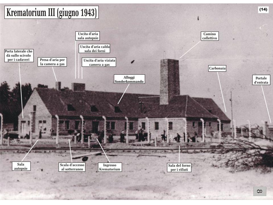 Birkenau: le persone