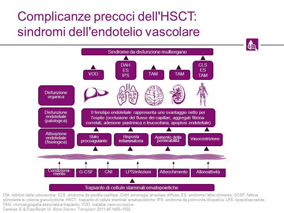 Complicanze precoci dell HSCT: sindromi dell endotelio vascolare CNI, inibitori della calcineurina; CLS, sindrome da perdita capillare; DAH, emorragia alveolare diffusa; ES, sindrome l'attecchimento; GCSF, fattore stimolante le colonie granulocitiche; HSCT; trapianto di cellule staminali ematopoietiche; IPS, sindrome da polmonite idiopatica; LPS, lipopolisaccaride; TAM, microangiopatia associata al trapianto; VOD, malattia veno-occlusiva Carreras E & Diaz-Ricart M.