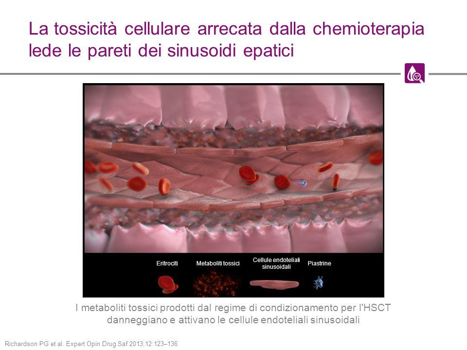La tossicità cellulare arrecata dalla chemioterapia lede le pareti dei sinusoidi epatici I metaboliti tossici prodotti dal regime di condizionamento per l HSCT danneggiano e attivano le cellule endoteliali sinusoidali EritrocitiMetaboliti tossici Cellule endoteliali sinusoidali Piastrine Richardson PG et al.