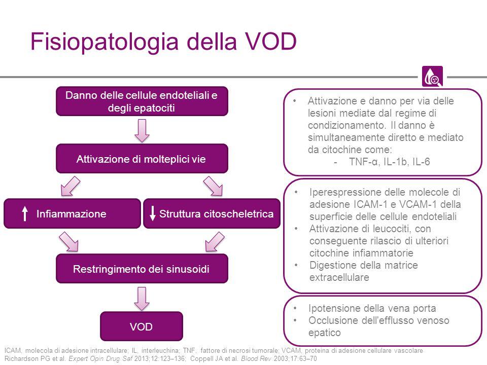 Fisiopatologia della VOD ICAM, molecola di adesione intracellulare; IL, interleuchina; TNF, fattore di necrosi tumorale; VCAM, proteina di adesione ce