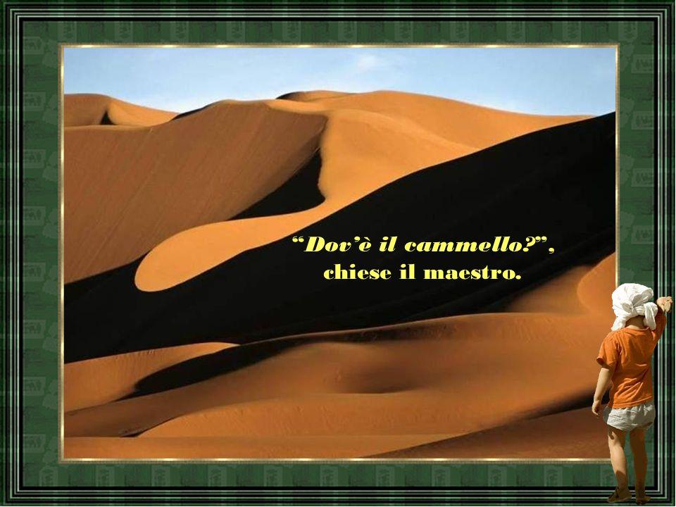 Dov'è il cammello? , chiese il maestro.