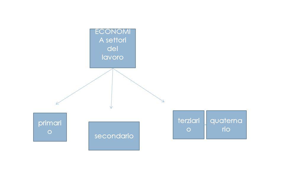 ECONOMI A settori del lavoro primari o secondario terziari o quaterna rio