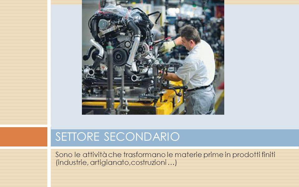 Sono le attività che trasformano le materie prime in prodotti finiti (industrie, artigianato,costruzioni …) SETTORE SECONDARIO