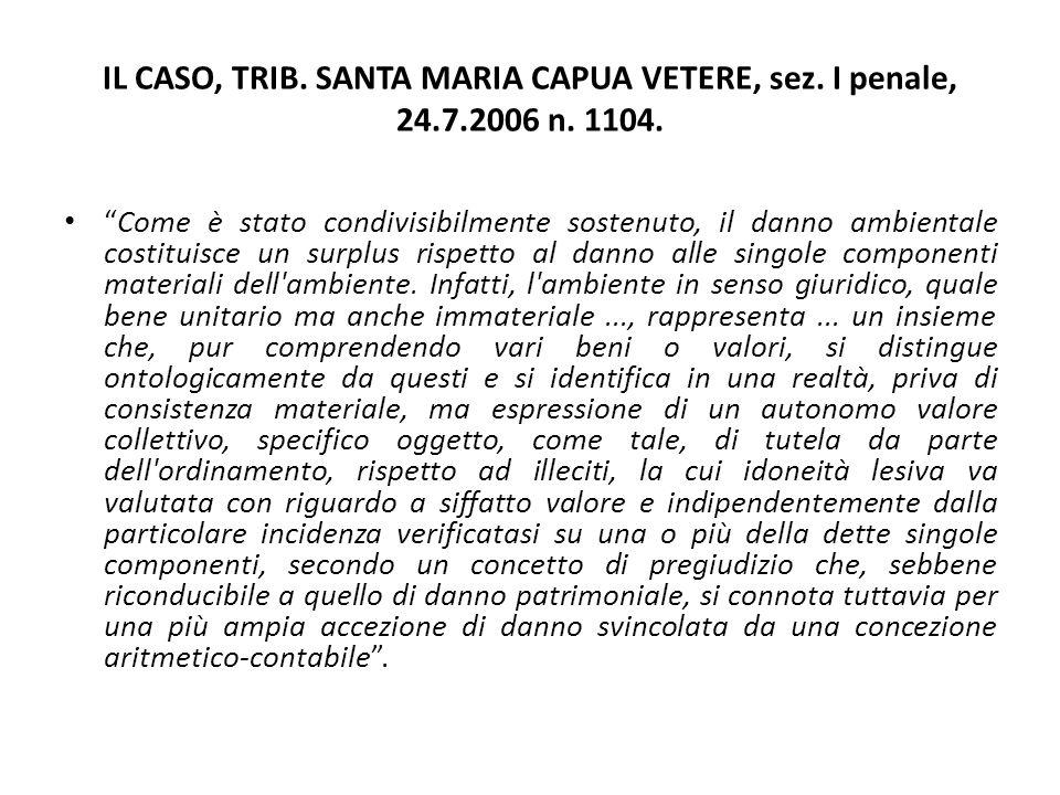 """IL CASO, TRIB. SANTA MARIA CAPUA VETERE, sez. I penale, 24.7.2006 n. 1104. """"Come è stato condivisibilmente sostenuto, il danno ambientale costituisce"""