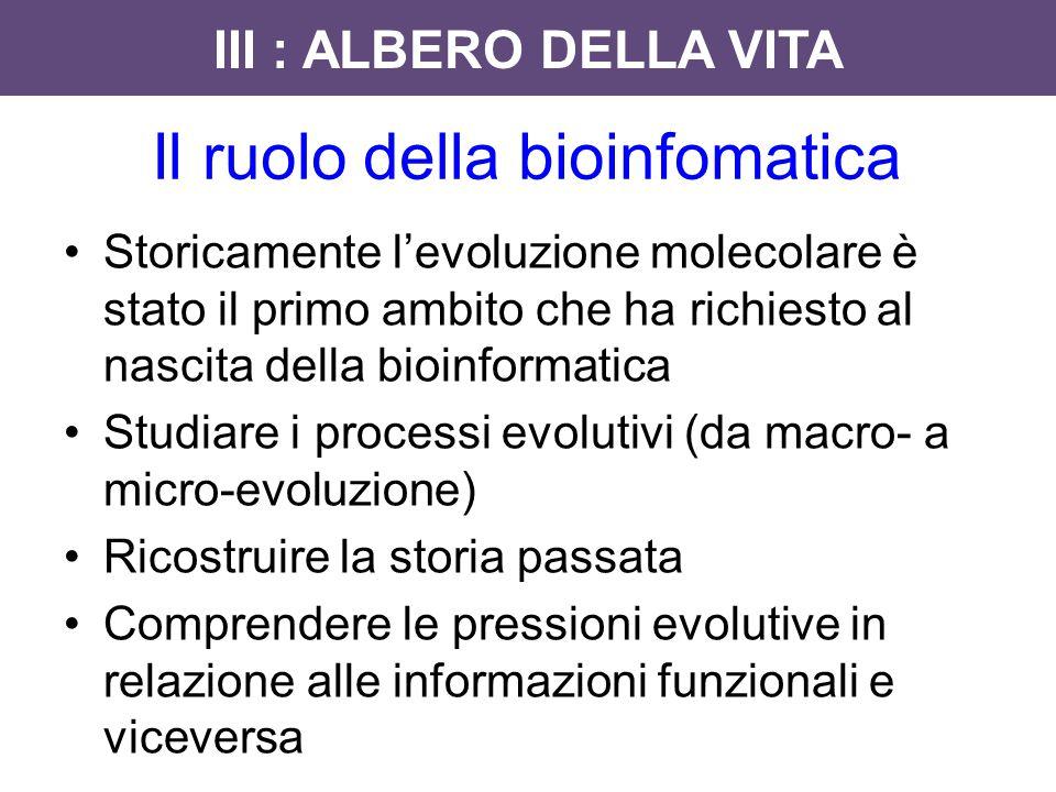 Storicamente l'evoluzione molecolare è stato il primo ambito che ha richiesto al nascita della bioinformatica Studiare i processi evolutivi (da macro-