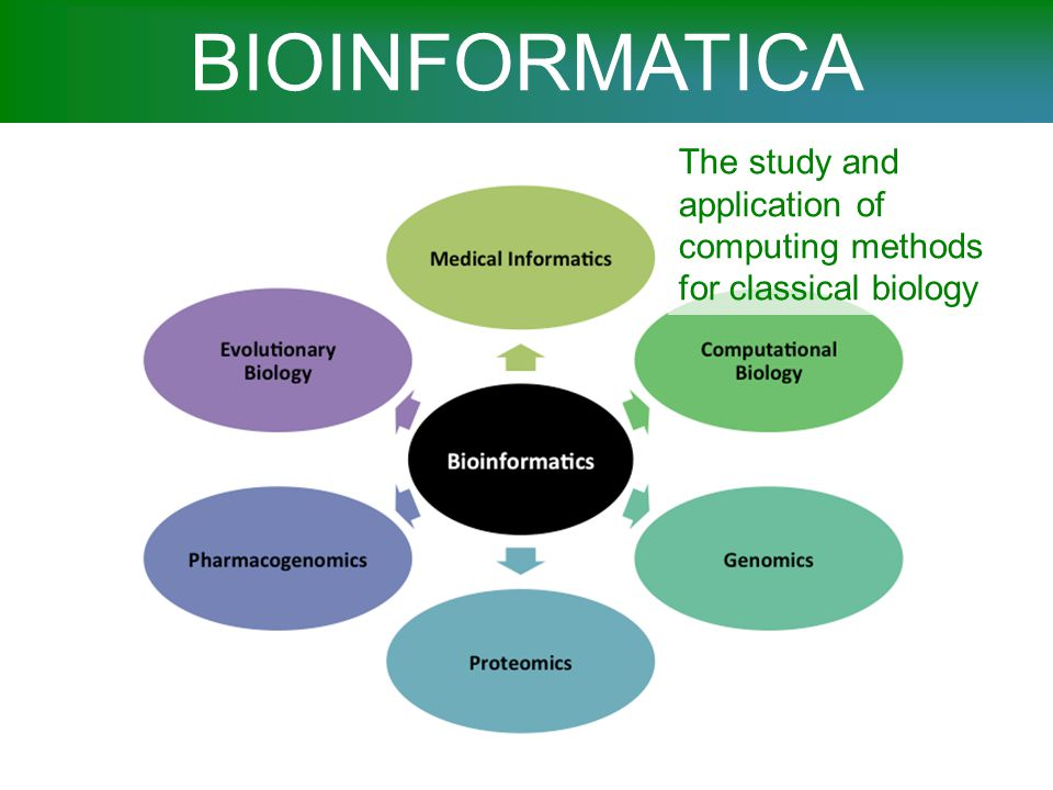 BIOINFORMATICA The study and application of computing methods for classical biology