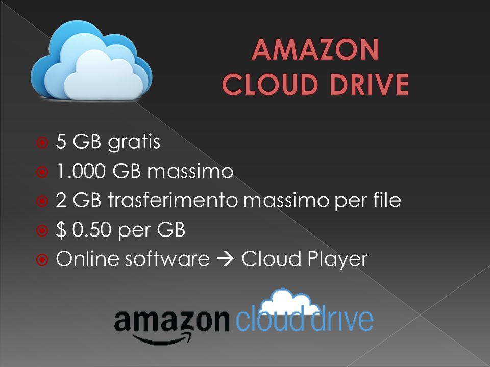  5 GB gratis  1.000 GB massimo  2 GB trasferimento massimo per file  $ 0.50 per GB  Online software  Cloud Player