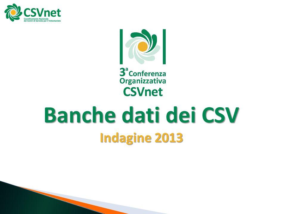 Banche dati dei CSV Indagine 2013