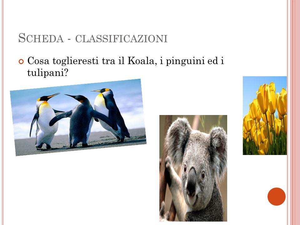 S CHEDA - CLASSIFICAZIONI Cosa toglieresti tra il Koala, i pinguini ed i tulipani?