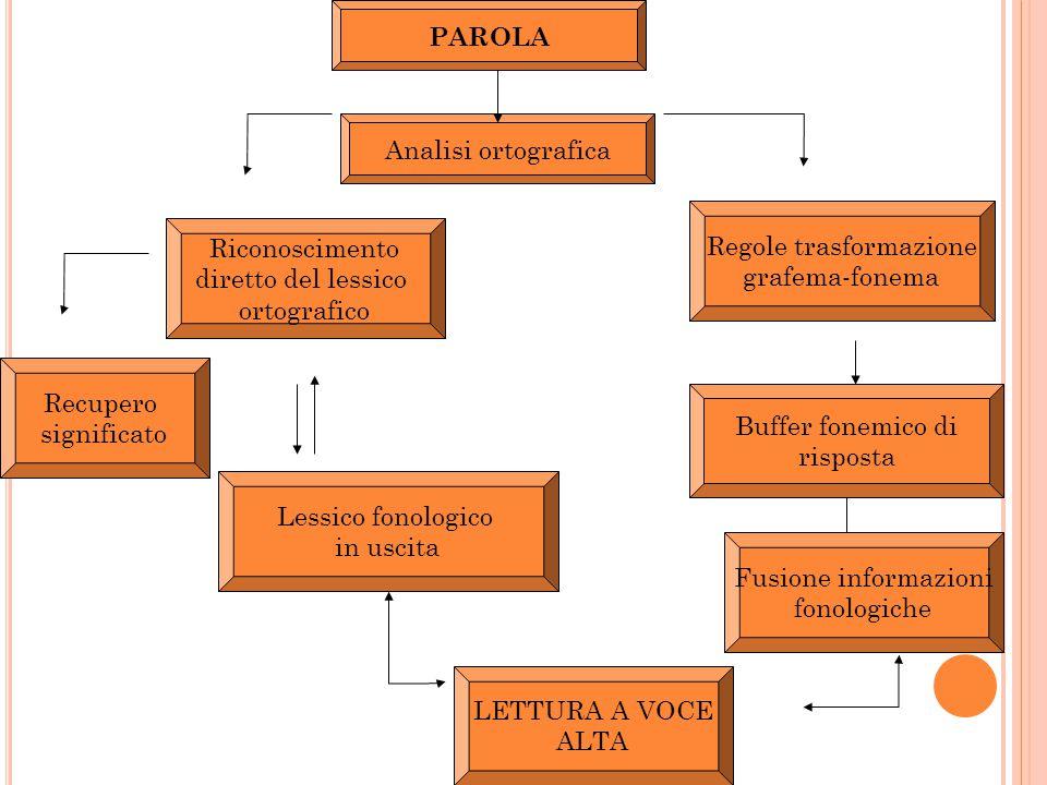 PAROLA Regole trasformazione grafema-fonema Fusione informazioni fonologiche Riconoscimento diretto del lessico ortografico Recupero significato Lessi