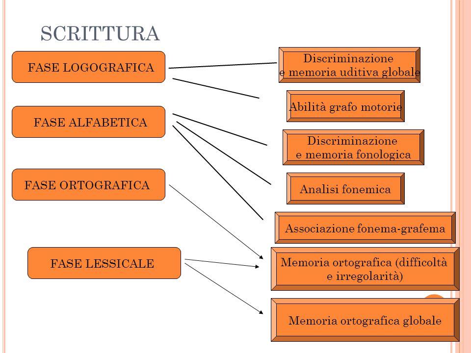 SCRITTURA Discriminazione e memoria uditiva globale Abilità grafo motorie Discriminazione e memoria fonologica Analisi fonemica Associazione fonema-gr