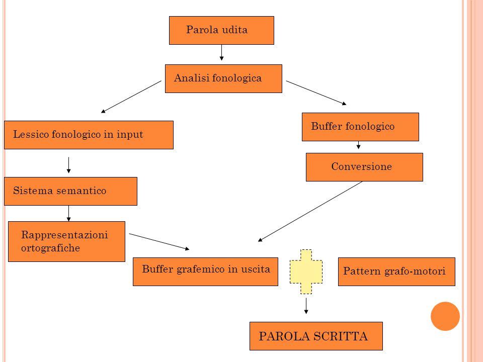 Parola udita Analisi fonologica Buffer fonologico Conversione Buffer grafemico in uscita PAROLA SCRITTA Lessico fonologico in input Sistema semantico