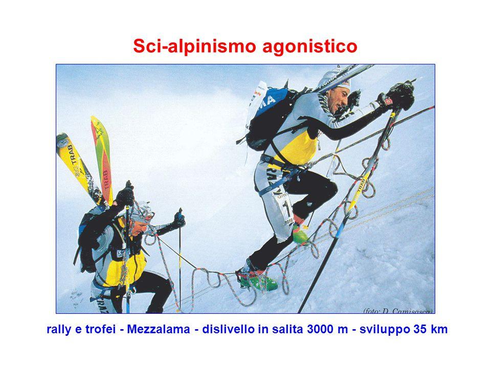 Sci-alpinismo agonistico rally e trofei - Mezzalama - dislivello in salita 3000 m - sviluppo 35 km