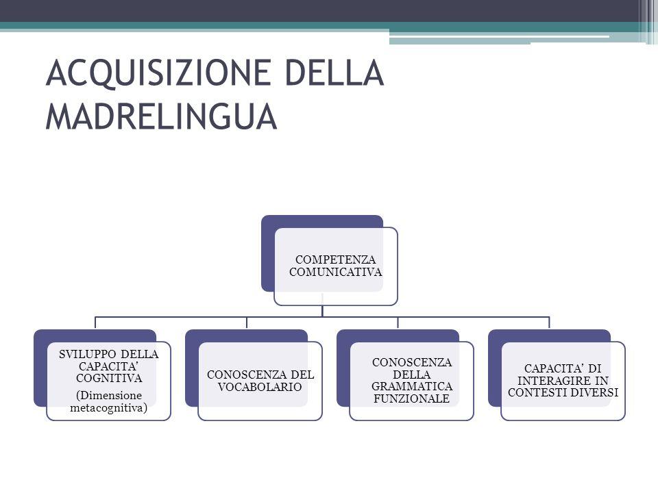 ACQUISIZIONE DELLA MADRELINGUA COMPETENZA COMUNICATIVA SVILUPPO DELLA CAPACITA' COGNITIVA (Dimensione metacognitiva) CONOSCENZA DEL VOCABOLARIO CONOSC