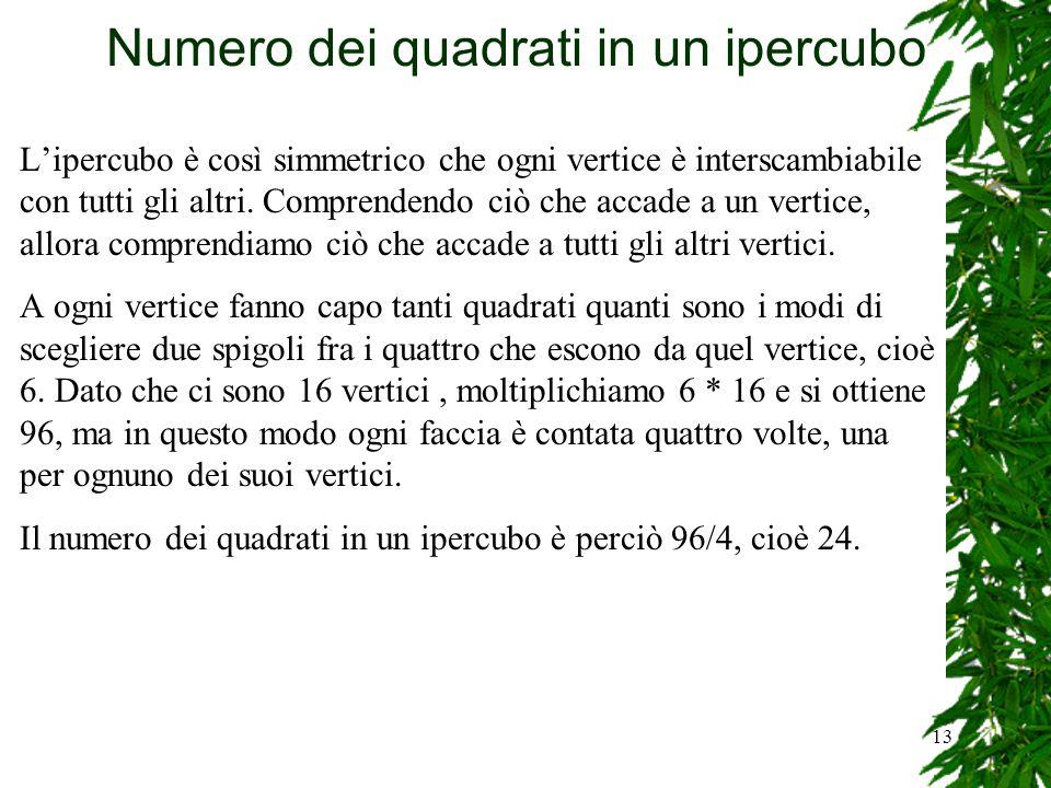 13 Numero dei quadrati in un ipercubo L'ipercubo è così simmetrico che ogni vertice è interscambiabile con tutti gli altri. Comprendendo ciò che accad